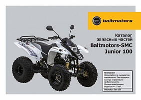 ATV Junior 100